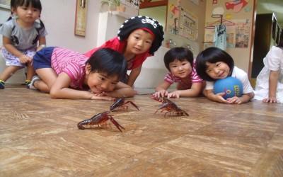 伊久身幼稚園8