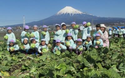 16.04 ゆきよし幼稚園 写真