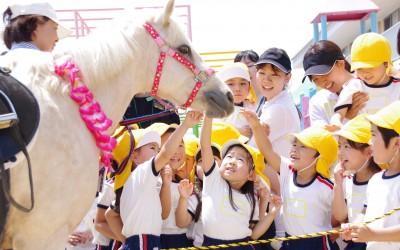 R107浜松 平和子ども園photo